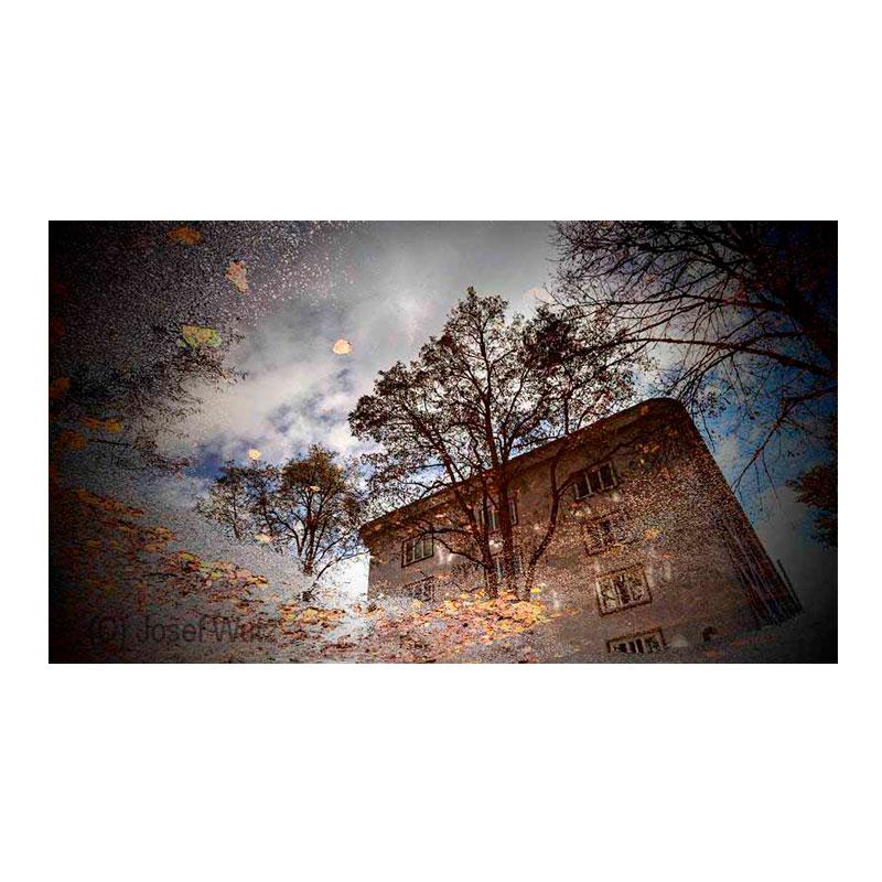 Bunker im Herbst